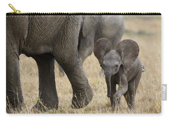 African Elephant Mother And Under 3 Carry-all Pouch