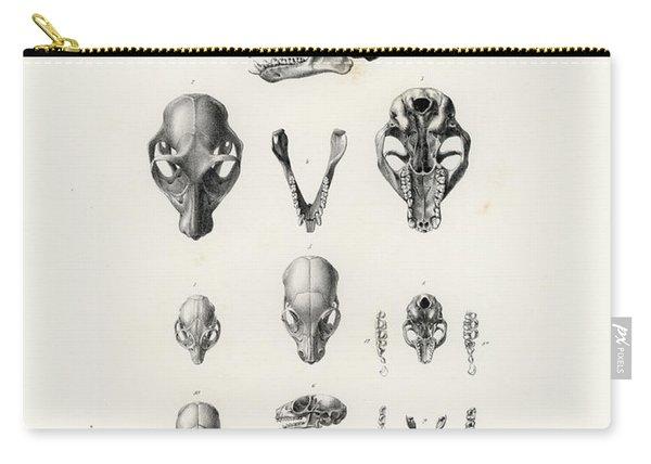 African Mammal Skulls Carry-all Pouch
