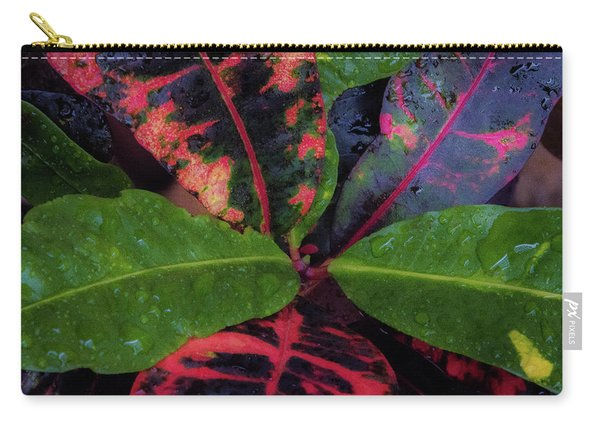 After The Rain Has Fallen Carry-all Pouch