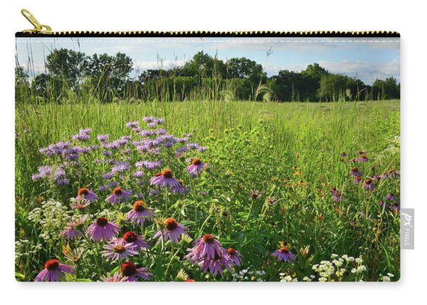 Afternoon In Moraine Hills State Park Carry-all Pouch