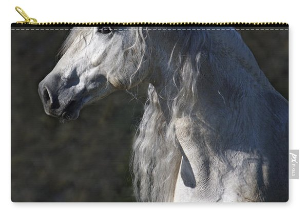 Alejandro Carry-all Pouch