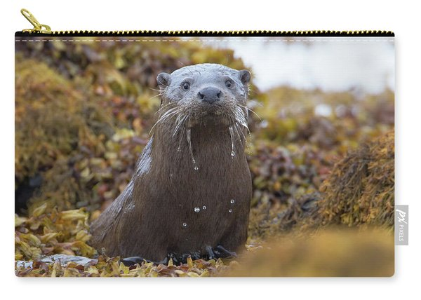 Alert Female Otter Carry-all Pouch