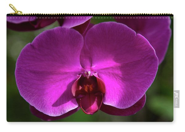 Allan Gardens Orchid Carry-all Pouch