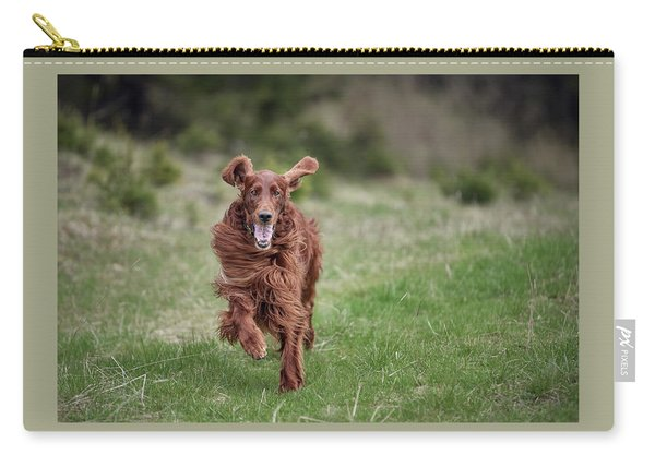 Allegro's March Carry-all Pouch