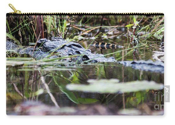 Alligator And Hatchling-2 Carry-all Pouch