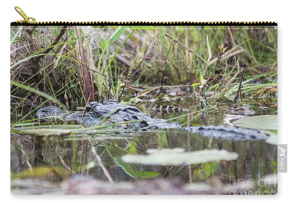 Alligator And Hatchling Carry-all Pouch
