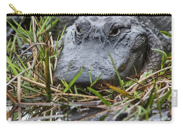Alligator Closeup-0642 Carry-all Pouch