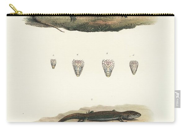 Alligator Lizards From Mexico Carry-all Pouch