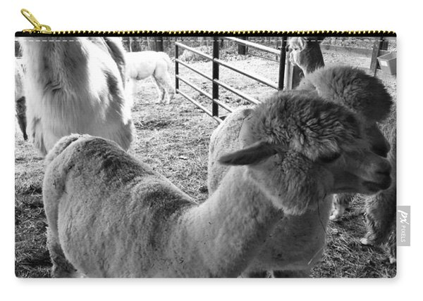 Alpaca Meeting  Carry-all Pouch
