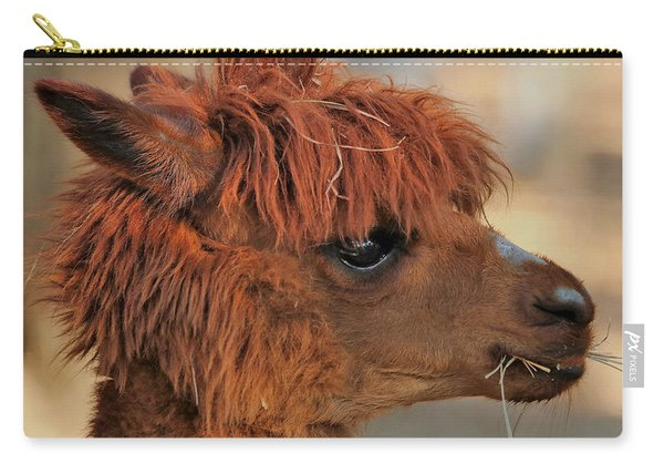Alpaca Portrait Carry-all Pouch