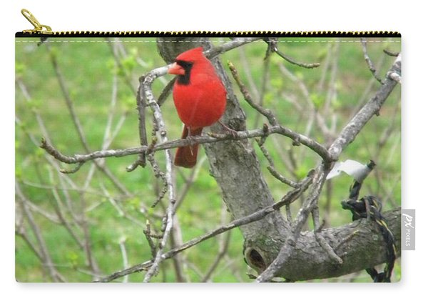 Always With Us -cardinals Carry-all Pouch