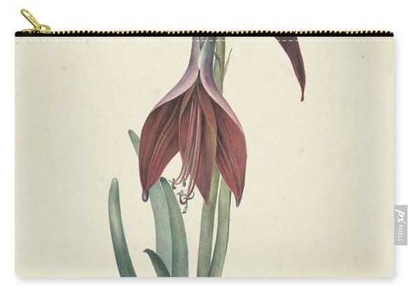 Amaryllis Formosissima Carry-all Pouch