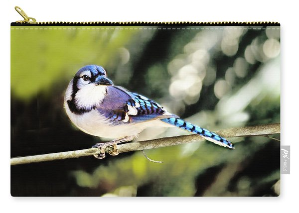 American Blue Jay On Alert Carry-all Pouch