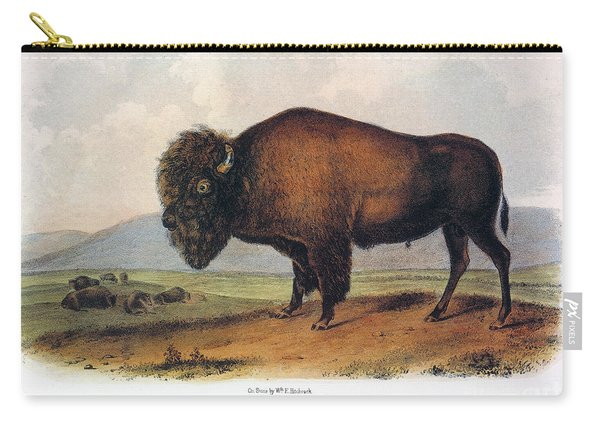 American Buffalo, 1846 Carry-all Pouch