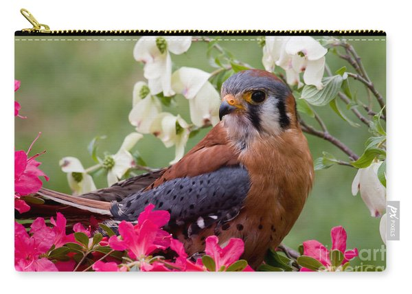 American Kestrel In The Springtime Carry-all Pouch