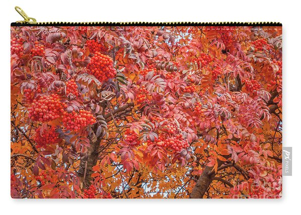 American Mountain Ash In Autumn Carry-all Pouch