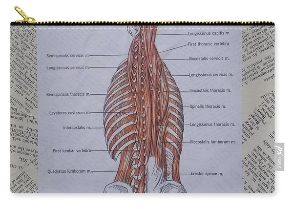 Anatomy Of Art Deep Muscles Of The Back Carry-all Pouch