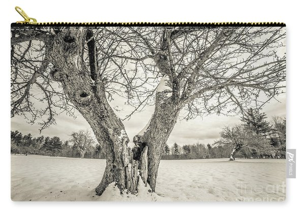 Ancient Apple Trees In Winter Carry-all Pouch