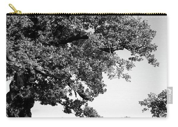 Ancient Oak, Bradgate Park Carry-all Pouch