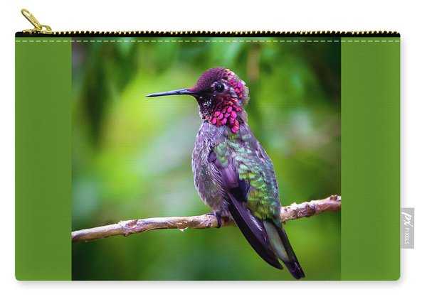 Anna Humming Bird Carry-all Pouch