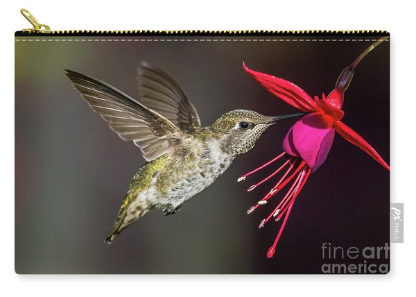 Anna Immature Hummingbird Carry-all Pouch