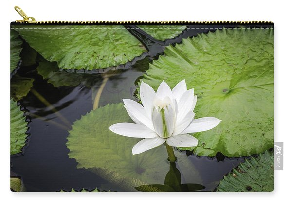Another Lily Carry-all Pouch