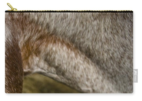 Carry-all Pouch featuring the photograph Appaloosa 2 by Catherine Sobredo