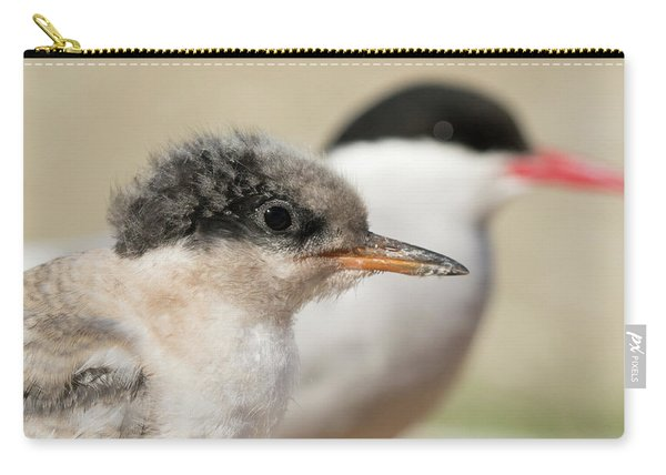 Arctic Tern Chick With Parent - Scotland Carry-all Pouch