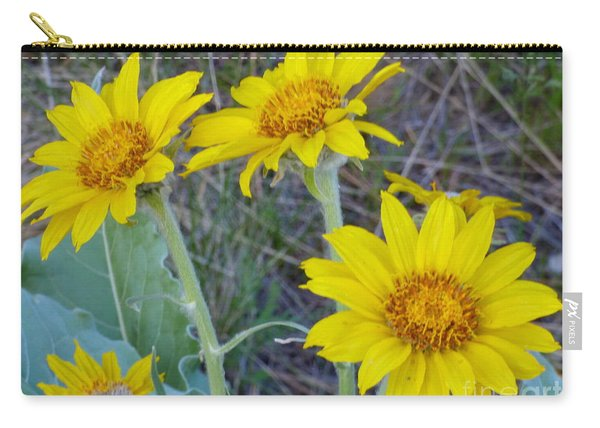 Arrowleaf Balsamroot Flower Carry-all Pouch