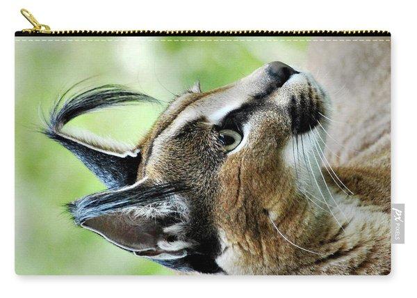 Curious Caracal Carry-all Pouch