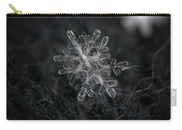 Carry-all Pouch featuring the photograph Snowflake Photo - January 18 2013 Grey Colors by Alexey Kljatov