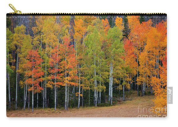 Aspen Color Carry-all Pouch