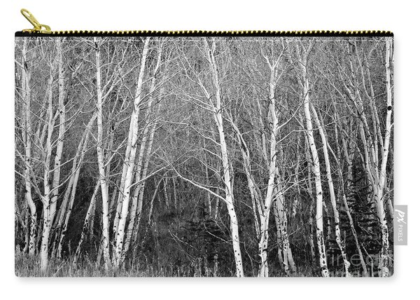 Aspen Forest Black And White Print Carry-all Pouch