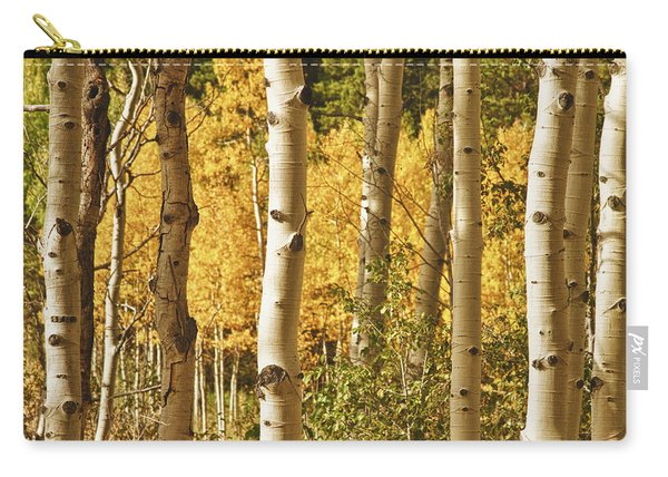 Aspen Gold Carry-all Pouch