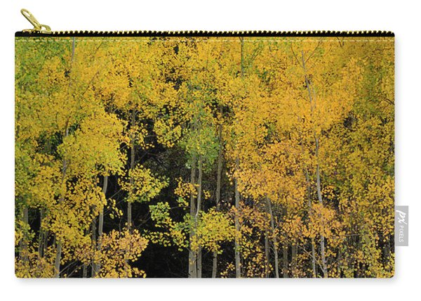 Carry-all Pouch featuring the photograph Aspen Haven  by Ron Cline