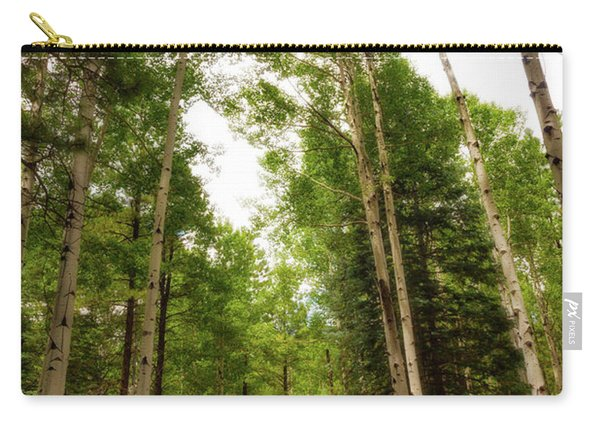 Aspens Galore Carry-all Pouch