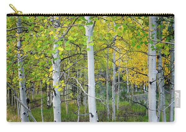 Aspens In Autumn 6 - Santa Fe National Forest New Mexico Carry-all Pouch