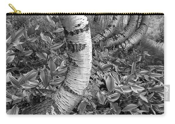 Aspens With Curves Carry-all Pouch