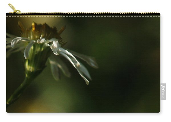 Aster's Peripheral Ray Carry-all Pouch