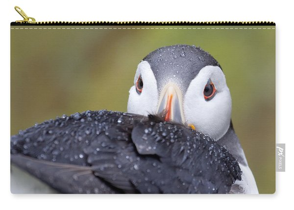 Atlantic Puffin With Rain Drops Carry-all Pouch