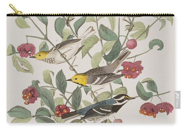 Audubons Warbler Hermit Warbler Black-throated Gray Warbler Carry-all Pouch