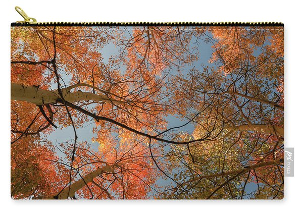 Autumn Aspens In The Sky Carry-all Pouch