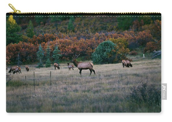 Carry-all Pouch featuring the photograph Autumn Bull Elk by Jason Coward