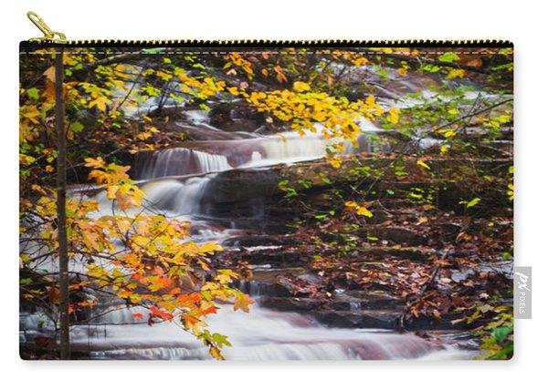 Autumn Cascade  Carry-all Pouch