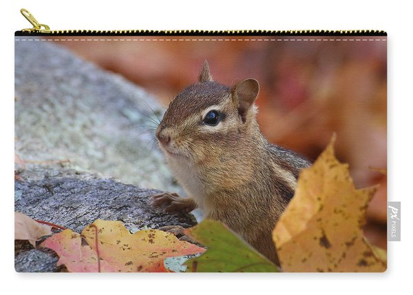 Autumn Chipmunk Carry-all Pouch