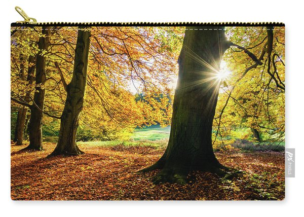 Carry-all Pouch featuring the photograph Autumn Evening In Saxony by Dmytro Korol