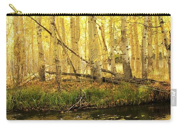 Carry-all Pouch featuring the photograph Autumn Soft Light In Stream by Sean Sarsfield