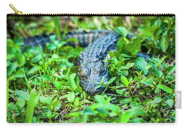 Baby Alligator Carry-all Pouch