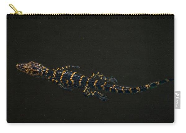 Baby Alligator Delray Beach Florida Carry-all Pouch