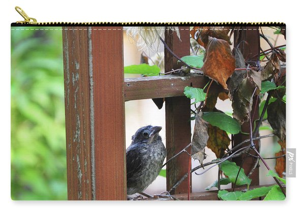 Baby Bird Sitting Carry-all Pouch